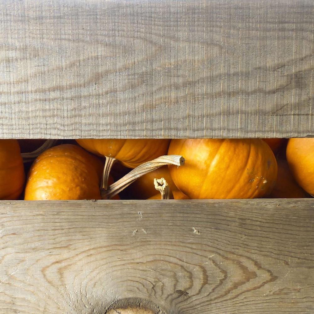 Aufbewahrung Holzkisten